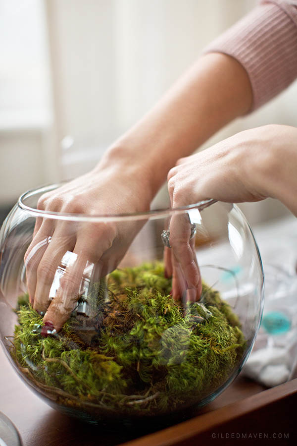 Instead of sending boring flowers, send a TERRARIUM! Ames & Oates is the best gifting company EVER! They have super chic gifts for girls AND guys. You HAVE to check them out!